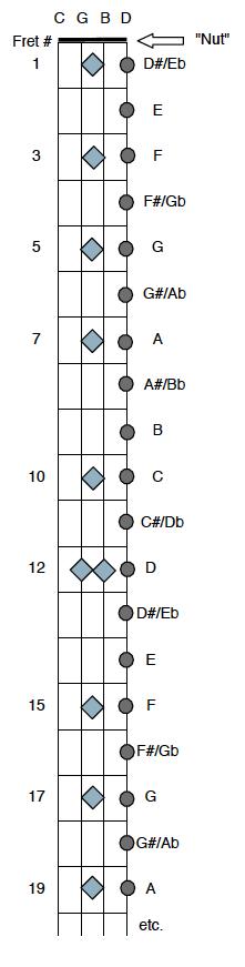 Plectrum Banjo Chords – Scott Anthony Banjo/Guitar